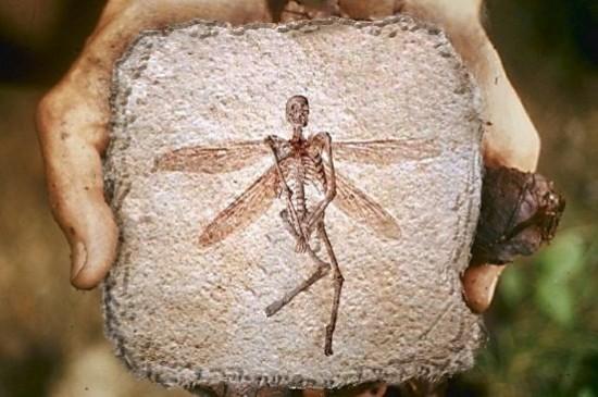 Лекция «Мифы и реальность в археологии»