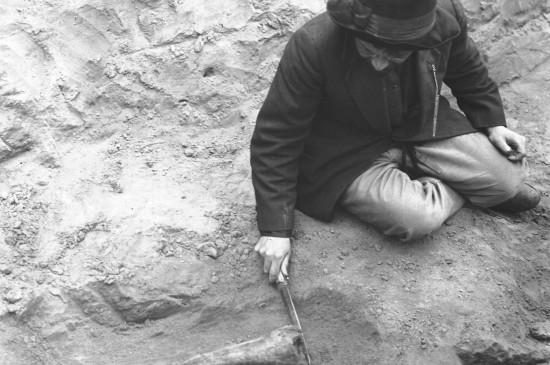 Заседание «Красноярского археологического клуба»